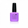 Shellac - Beckoning Begonia - 7,3ml